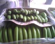 Предлагаем  бананы  из Эквадора
