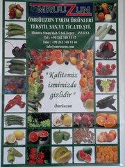 Овощи,  фрукты,  цитрусы по ценам ниже рыночных со склада в Одессе.
