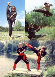 боевые искусства,  рукопашный бой