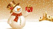 туры в Карпаты Новый год,  тур Закарпатье Новый год,  экскурсии,  отдых