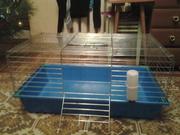 продаю клетку для кролика