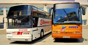 Аренда автобуса для поездок на футбол с Одессы и Одесской области