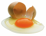 Экологически чистые куриные яйца