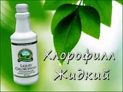 Жидкий Хлорофилл от НСП/NSP в Одессе