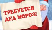 Требуется Дед Мороз и Аниматор