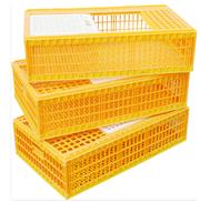 Ящик для перевозки птицы,  ящики для суточных цыплят