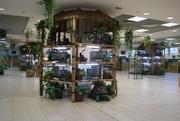 Продам декоративний трёхэтажный стеллаж из бамбуковых стволов бу