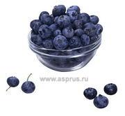 Работы по сбору ягоды в Польше