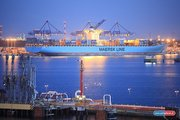 морские контейнерные перевозки,  таможенные услуги