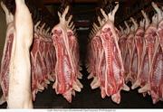 Мясо свинины в тушах и полутушах оптом от производителя