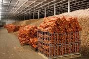 Продам Картофель по Оптовой цене.