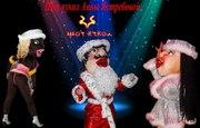 Шоу кукол на 8 Марта,  свадьбу, юбилей