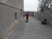 Укладка тротуарной плитки от 65 грн.