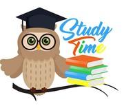 Учебный центр Study Time