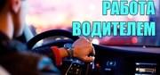 Водитель на авто компании  в Киеве