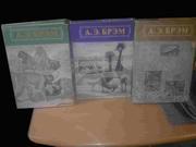 Брэм. Жизнь животных в 3 томах. Репринт