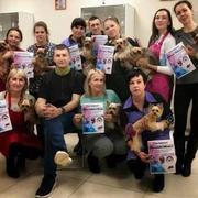 Школа груминга,  обучение стрижкам животных. Одесса