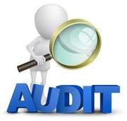 Предоставлю аудиторские и бухгалтерские услуги,  консультации