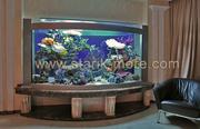 Эксклюзивные аквариумы на заказ в Одессе. Обслуживание аквариумов.